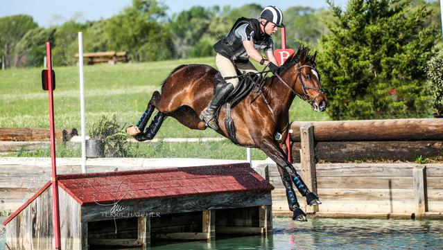 Zippin Free, Star T Evenitng, Eventing Barns Fort Worth, Jody Taylor